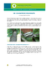 IF_Biodiv_ChenilleProces_NL.pdf - application/pdf