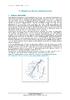 Water 11 - application/pdf
