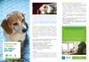FOLD_BEA_Action_NL - application/pdf
