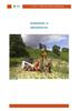 Hoofdstuk_12_Grondwater_NL.pdf - application/pdf