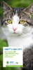 Fold_ChatKat_ID_NL - application/pdf