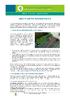 IF_Potager_AromatischePlanten_Plantesaroma_FR - application/pdf