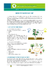 IF_Potager_Potager_1m2_Moestuin_FR - application/pdf