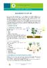 IF_Potager_Potager_1m2_Moestuin_NL - application/pdf