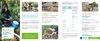FOLD_Sol_PrimesBodemverontreiniging_NL - application/pdf