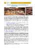 Comptoir traiteur fromagerie charcuterie et boucherie_NL.pdf - application/pdf