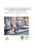STUD_2019_Pigeons - application/pdf