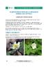 IF_biodiversite_Anemone_sylvie_DEF_FR.pdf - application/pdf