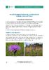 IF_biodiversite_Centauree_jacee_DEF_FR.pdf - application/pdf