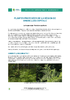 IF_biodiversite_Fougere_aigle_DEF_FR.pdf - application/pdf