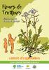 20200423_CARNET_EXPLORATION_FR-compressed.pdf - application/pdf
