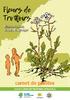 20200423_CARNET_PLANTES_FR-compressed.pdf - application/pdf